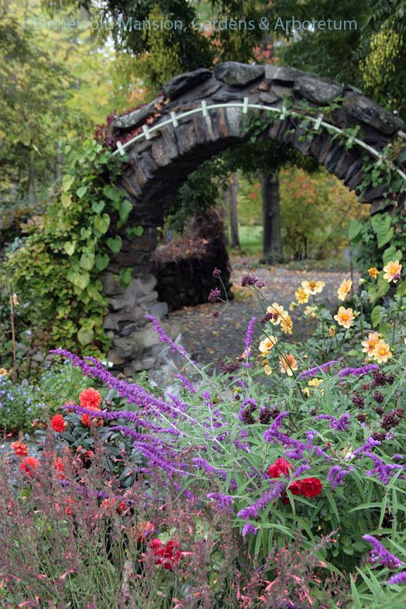 Lingering flowers in the Rose Garden