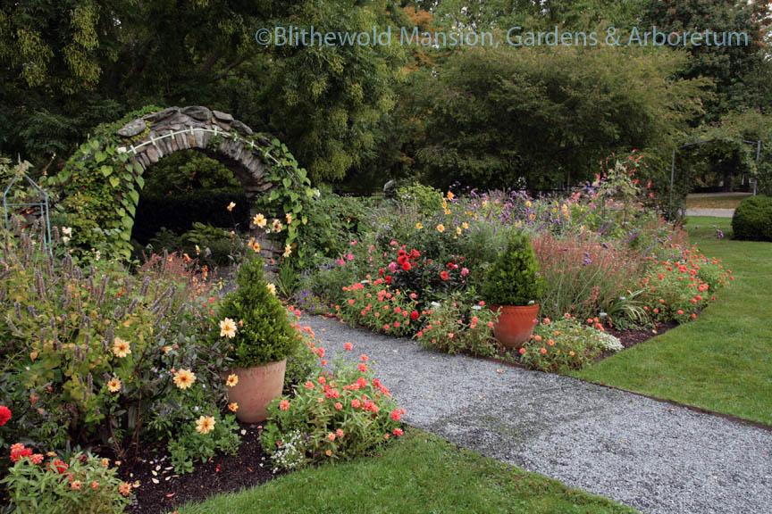 The Rose Garden won't quit
