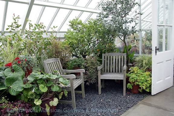 Conversation corner in the greenhouse