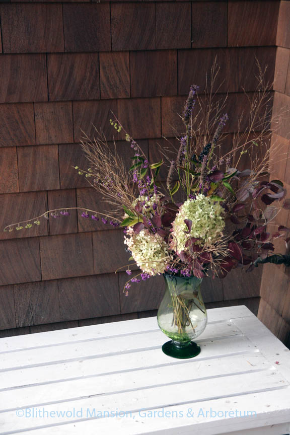 Hydrangea, beauty berry, viburnum, anise hyssop and switchgrass