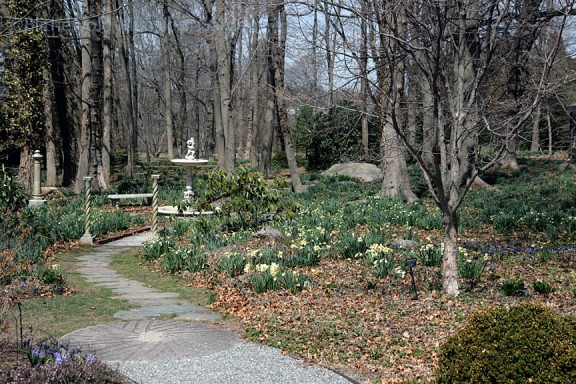 Bosquet view, 4-16-15
