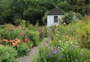 Idea Garden Gallery