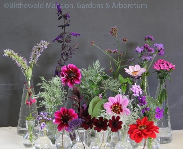 Color Scheme for Rose Garden