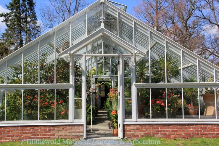 Holiday Hothouse - Blithewold on winter potted plants, winter shade plants, winter blooming plants, winter porch plants, winter container plants, winter hibiscus, winter yard plants, winter deck plants, winter perennial plants, winter interest plants, winter flowering plants, winter fragrant plants, winter house landscaping, winter planter plants, winter house art, winter hardy plants, winter outdoor plants, winter house cookies, great winter plants, winter patio plants,