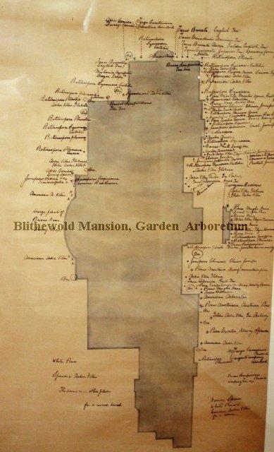 John DeWolf's Original Landscape Plan for Blithewold